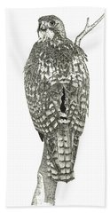 Red-tailed Hawk Beach Towel