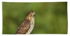 Beach Towel featuring the photograph Red-tailed Hawk by Peter Lakomy