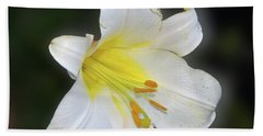 Beach Towel featuring the photograph White Lily by Elvira Ladocki
