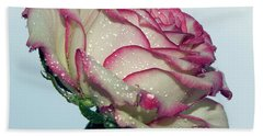 Beautiful Rose Beach Towel by Elvira Ladocki