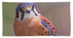 American Kestrel  Beach Towel