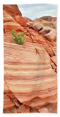 Beach Towel featuring the photograph Colorful Wash In Valley Of Fire by Ray Mathis