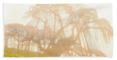 Beach Towel featuring the photograph Miharu Takizakura Weeping Cherry06 by Tatsuya Atarashi