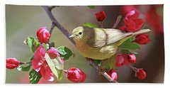 Orange-crowned Warbler Beach Towel
