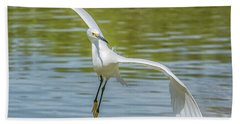 Snowy Egret Flight Beach Sheet by Tam Ryan