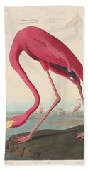 American Flamingo Beach Sheet