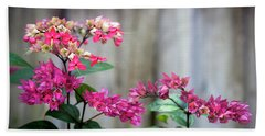 Bleeding Heart Flowers Clerodendrum Painted  Beach Sheet