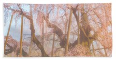 Beach Towel featuring the photograph Miharu Takizakura Weeping Cherry07 by Tatsuya Atarashi