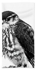 Portrait Of Bird Of Prey Beach Towel