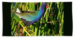 Purple Gallinule Beach Sheet