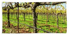 Rows Of Grapevines In Napa Valley California Beach Towel