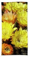 Yellow Cactus Flowers Beach Towel by Jim And Emily Bush