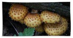 Mushrooms  Beach Sheet