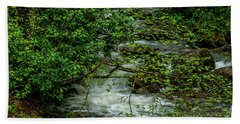 Beach Towel featuring the photograph Kens Creek Cranberry Wilderness by Thomas R Fletcher