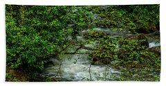 Beach Sheet featuring the photograph Kens Creek Cranberry Wilderness by Thomas R Fletcher