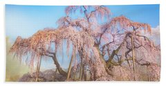 Beach Towel featuring the photograph Miharu Takizakura Weeping Cherry29 by Tatsuya Atarashi