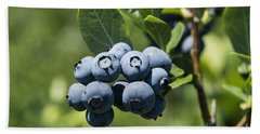 Blueberry Bush Beach Towel