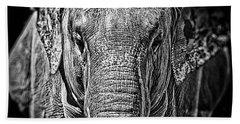 Elephant Collection Beach Towel