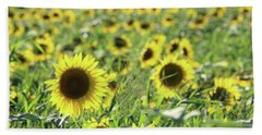Sunflowers Mattituck New York Beach Towel by Bob Savage