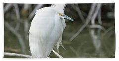 Beach Towel featuring the photograph Snowy Egret by Tam Ryan