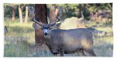 Beach Towel featuring the photograph 8x8 Mule Deer by Shane Bechler