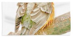 American Robin Male, Animal Portrait Beach Towel
