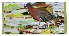 Green Heron Beach Sheet