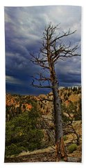 Bryce Canyon National Park Beach Towel