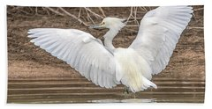 Snowy Egret Beach Towel by Tam Ryan
