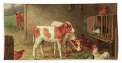 A Barn Interior With Two Ayrshire Calves, A Cockerel, Hens And A Rabbit Beach Towel
