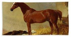 A Bay Racehorse In A Stall, 1843 Beach Towel