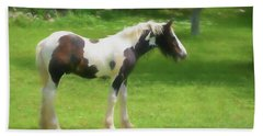 A Beautiful Young Gypsy Vanner Standing In The Pasture Beach Towel