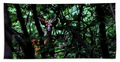 A Buck Peers From The Woods Beach Towel by Bruce Patrick Smith