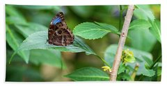 Beach Towel featuring the photograph A Butterfly Waiting by Raphael Lopez