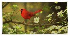 A Cardinal And His Dogwood Beach Towel