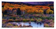 A Colorado Fall Along Kebler Pass Beach Sheet