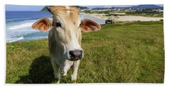 A Cow At The Beach Beach Towel