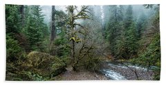 Beach Towel featuring the photograph A Creek Runs Through It by Belinda Greb