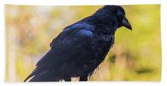 Beach Towel featuring the photograph A Crow Looks Away by Jonny D