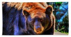 A Curious Black Bear Beach Sheet