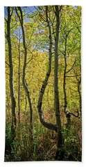 A Day In The Woods Beach Towel