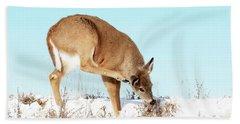 A Deer Playing In Snow Beach Sheet