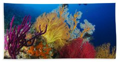 A Diver Looks On At A Colorful Reef Beach Towel