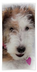Beach Towel featuring the photograph A Dog Named Butterfly by Karen Wiles