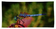 Beach Sheet featuring the photograph A Dragonfly 028 by George Bostian