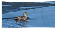 A Female Mallard In Thunder Bay Beach Sheet by Michael Peychich