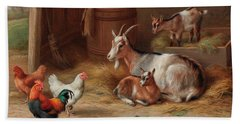 A Goat And Her Kids With A Cockerel And Hens Beach Towel