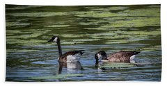 A Goose Ducks In Water Beach Towel by Ray Congrove