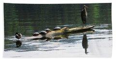A Heron, Four Turtles, And A Duck Beach Sheet