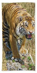 A Jungle King Beach Towel